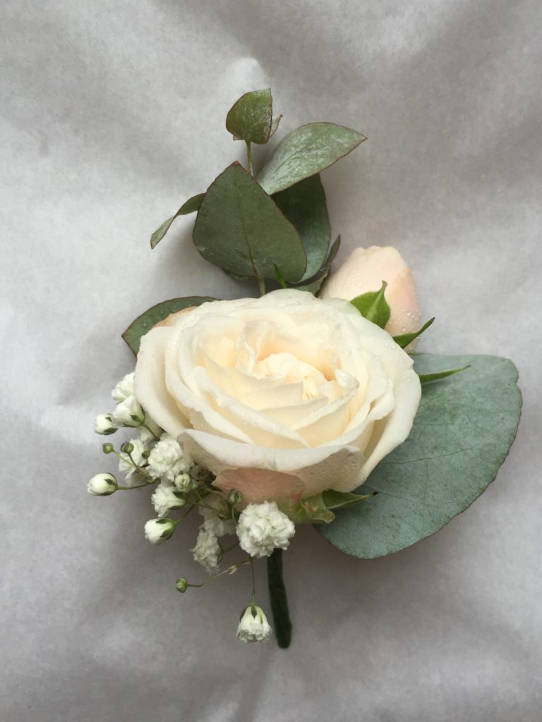 Blush spray rose buttonhole with eucalyptus